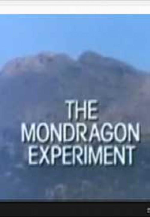 El experimento Mondragón. Cooperativismo empresarial