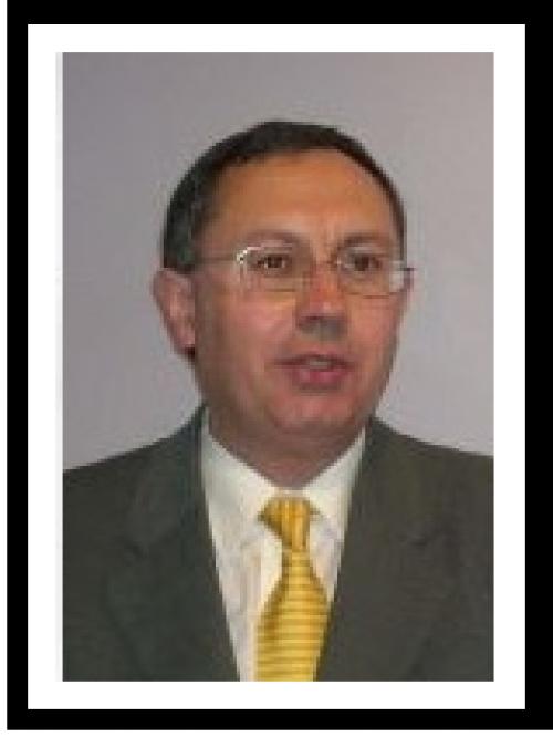 Enrique Llopis Agelán