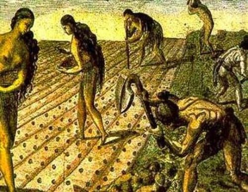 IV Jornadas de Historia Económica de la AMHE