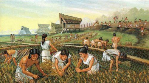 CALL FOR PANELS: II Congreso Internacional – Transiciones en la agricultura y la sociedad rural. Los desafíos globales en la historia rural