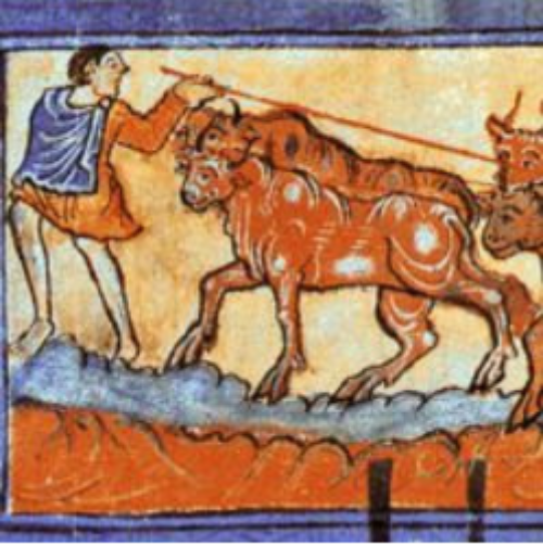CfP: Farm Animals. Husbandry, Poultry and Draught Beasts in Late Medieval Europe