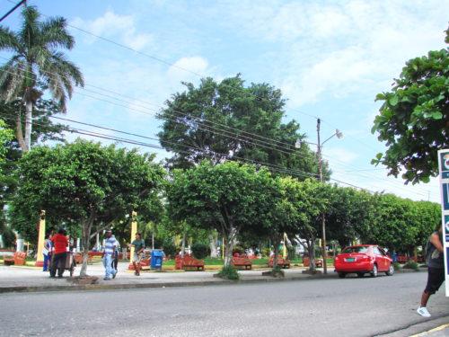 IX Simposio de la Sociedad Latinoamericana y Caribeña de Historia Ambiental