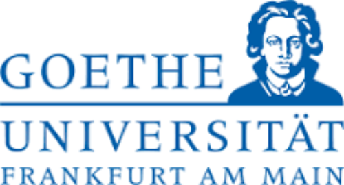 Call for Papers. Workshop at Goethe University Frankfurt